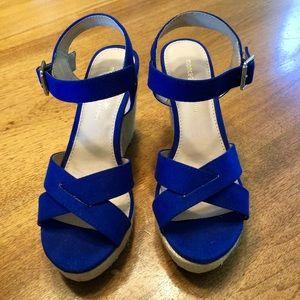 Royal Blue Sandal Wedges